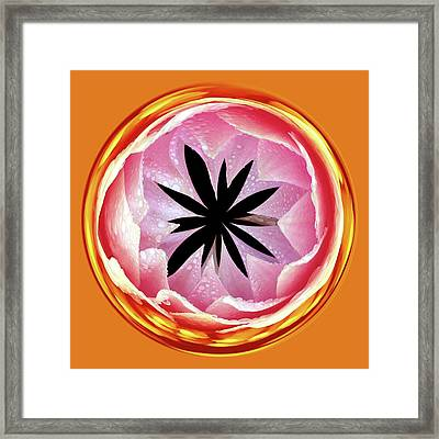 Framed Print featuring the photograph Lily Orb by Bill Barber