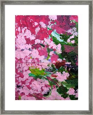 Lily Pads Framed Print by Kim Putney