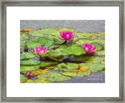 Lily Pads Framed Print by Larry Keahey