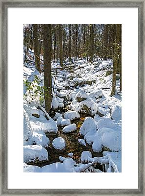 Lily Pads Of Snow Framed Print by Angelo Marcialis