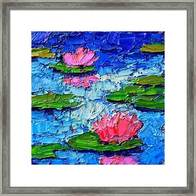 Lily Pond Impression 7 Framed Print by Ana Maria Edulescu