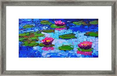Lily Pond Impression - Pink Waterlilies  Framed Print by Ana Maria Edulescu