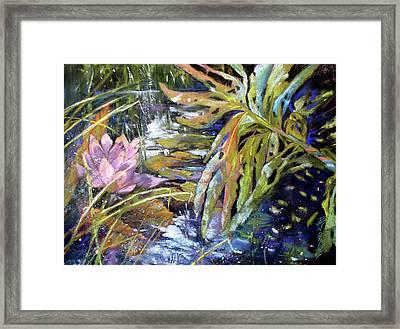 Lily Pond Light Dance Framed Print by Rae Andrews