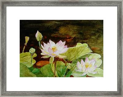 The Lily Pond - Painting  Framed Print