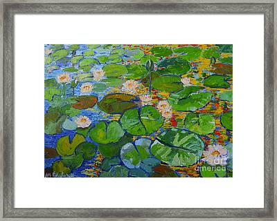 Lily Pond Reflections Framed Print by Ana Maria Edulescu