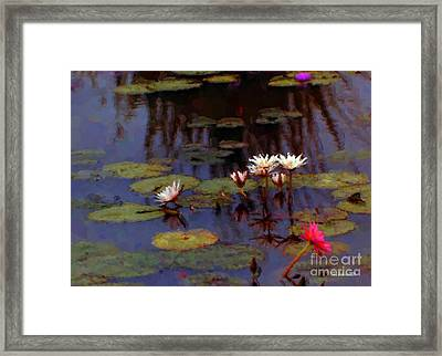 Lily Pond Watercolor Framed Print