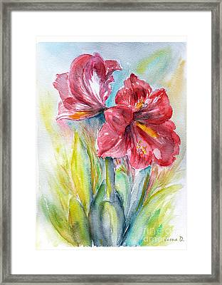 Lily Red Framed Print by Jasna Dragun