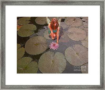 Lilypad Fairy Framed Print by Patricia Ridlon