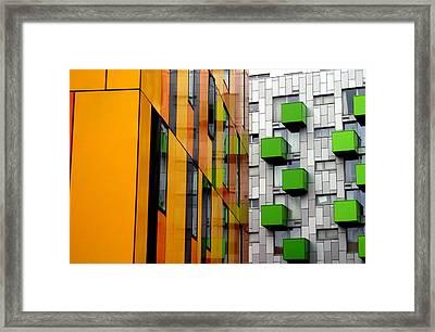 Lime And Lemon Framed Print by Jez C Self