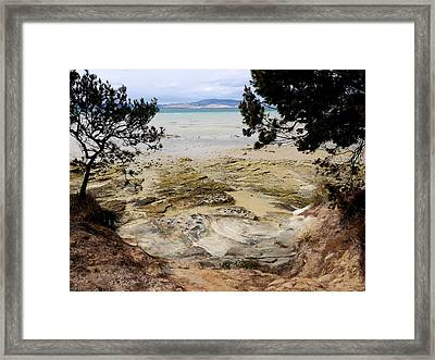 Lime Bay Tasmania 5 Framed Print