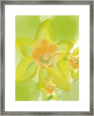 Lime Flower Burst Framed Print