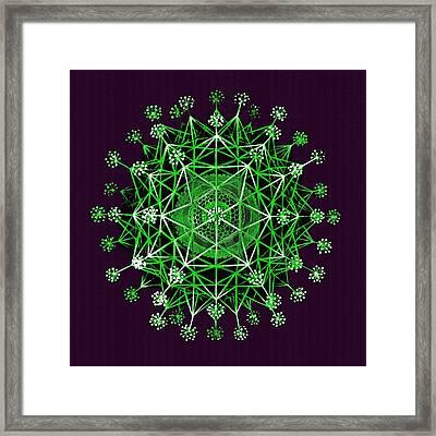 Lime Green Phaeodaria Framed Print by Diane Addis