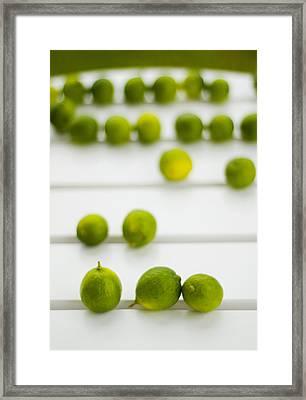 Lime Green Framed Print by Skip Hunt