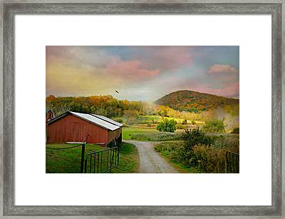 One Fine Day Framed Print by Diana Angstadt