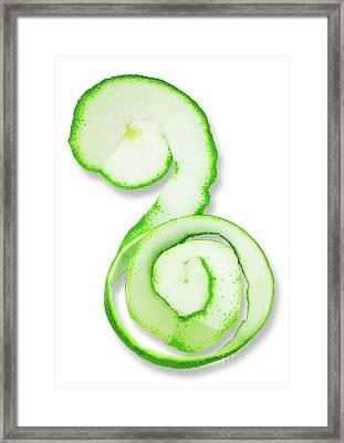 Lime.. Framed Print