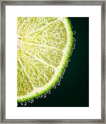 Lime Slice Framed Print