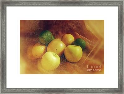 Limes, Lemons And Golden Apples Framed Print