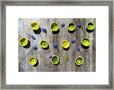 Limes Were Delicious Framed Print