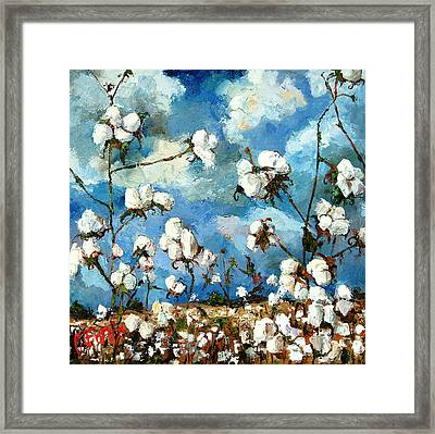 Limestone County Cotton Framed Print by Carole Foret