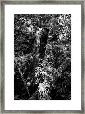 Limited And Restricted Framed Print