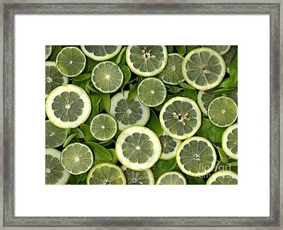 Limons Framed Print by Christian Slanec