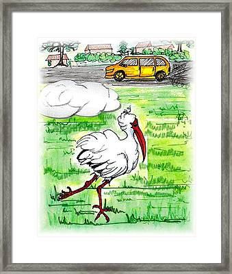 Limping Ibis Framed Print by Carol Allen Anfinsen