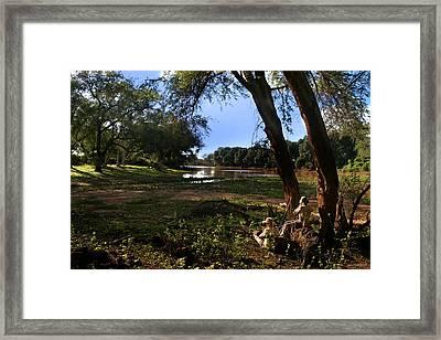 Limpopo River Delta  Framed Print
