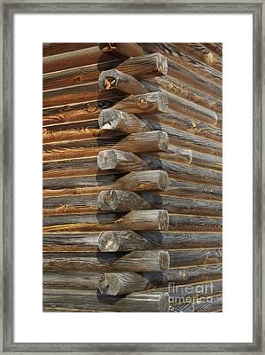 Lincoln Logs Framed Print