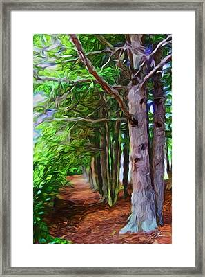 Framed Print featuring the painting Lincoln's Path by Joan Reese