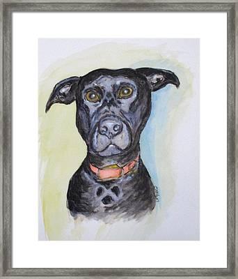 Linda's Doggie Framed Print by Clyde J Kell