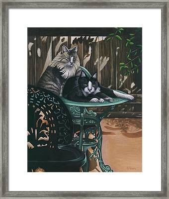 Linda's Patio Cats Framed Print by Carol Wilson