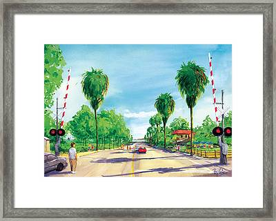 Linden To The Beach  Framed Print by Ray Cole