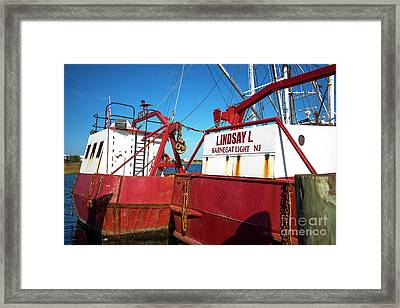 Framed Print featuring the photograph Lindsay L Red by John Rizzuto