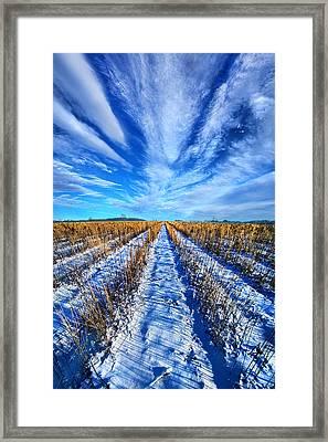 Line Of Sight Framed Print by Phil Koch
