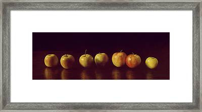 Lineage Framed Print by Barbara Groff