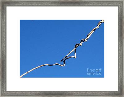 Framed Print featuring the photograph Reach by Kristine Nora