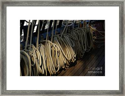 Lines Framed Print by Linda Shafer