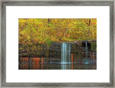 Lines Of Nature Framed Print