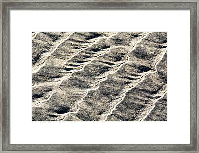 Lines On The Beach Framed Print