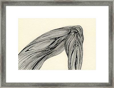Lines - #ss13dw002 Framed Print by Satomi Sugimoto