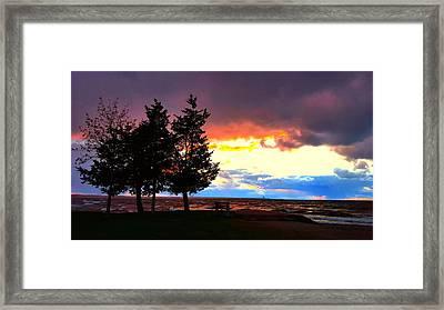 Lingering Light Framed Print by Dani McEvoy