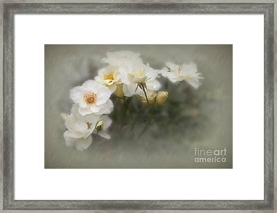 Linnea Framed Print
