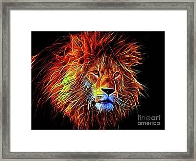 Lion 12818 Framed Print
