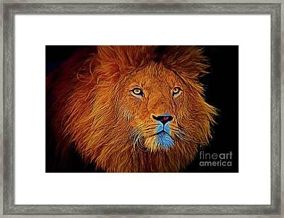 Lion 16218 Framed Print