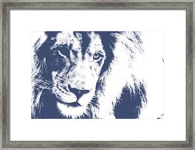 Lion 4 Framed Print by Joe Hamilton