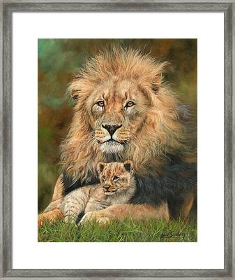 Lion And Cub Framed Print by David Stribbling