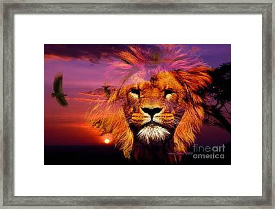 Lion And Eagle In A Sunset Framed Print