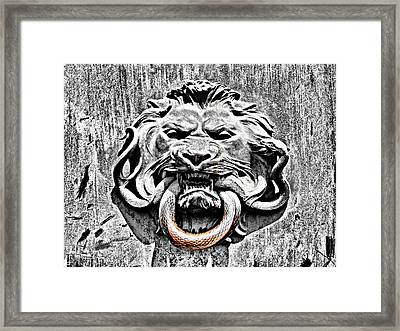 Lion And The Snake Framed Print by Greg Sharpe