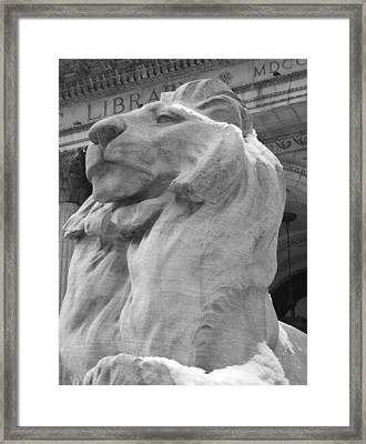 Lion At New York Public Library Framed Print