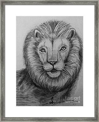 Lion Framed Print by Brindha Naveen